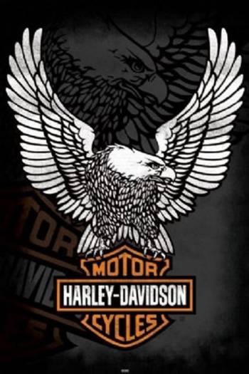 HARLEY DAVIDSON-EAGLE