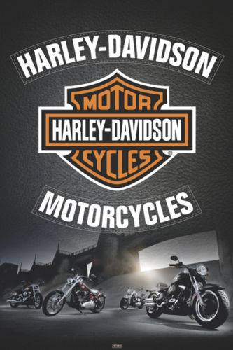 HARLEY DAVIDSON-LEATHER