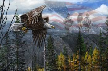 MAY FREEDOM FOREVER FLY