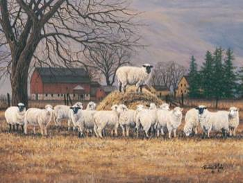 THE WOOL GATHERING